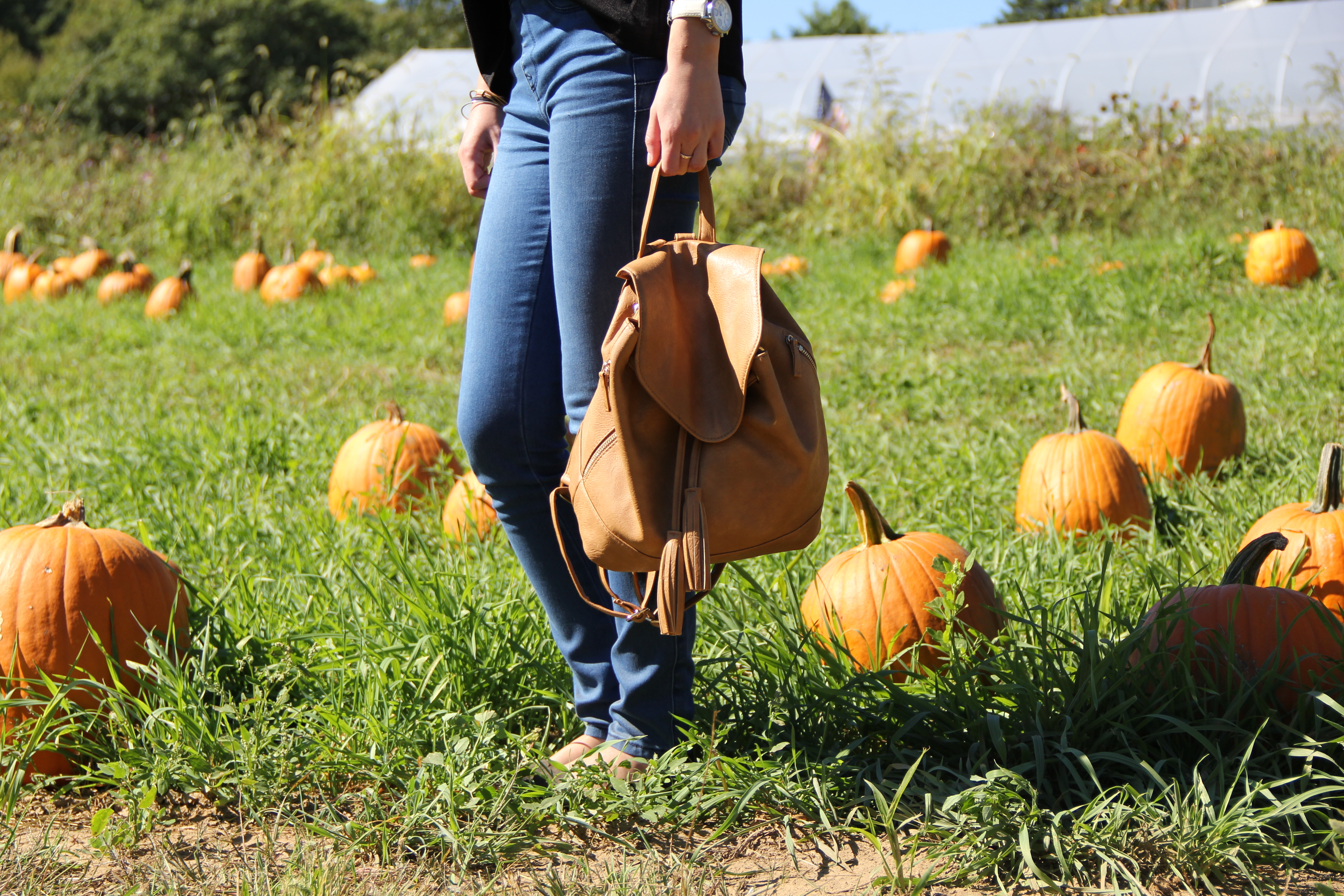 Fall ootd: Pumpkin Picking