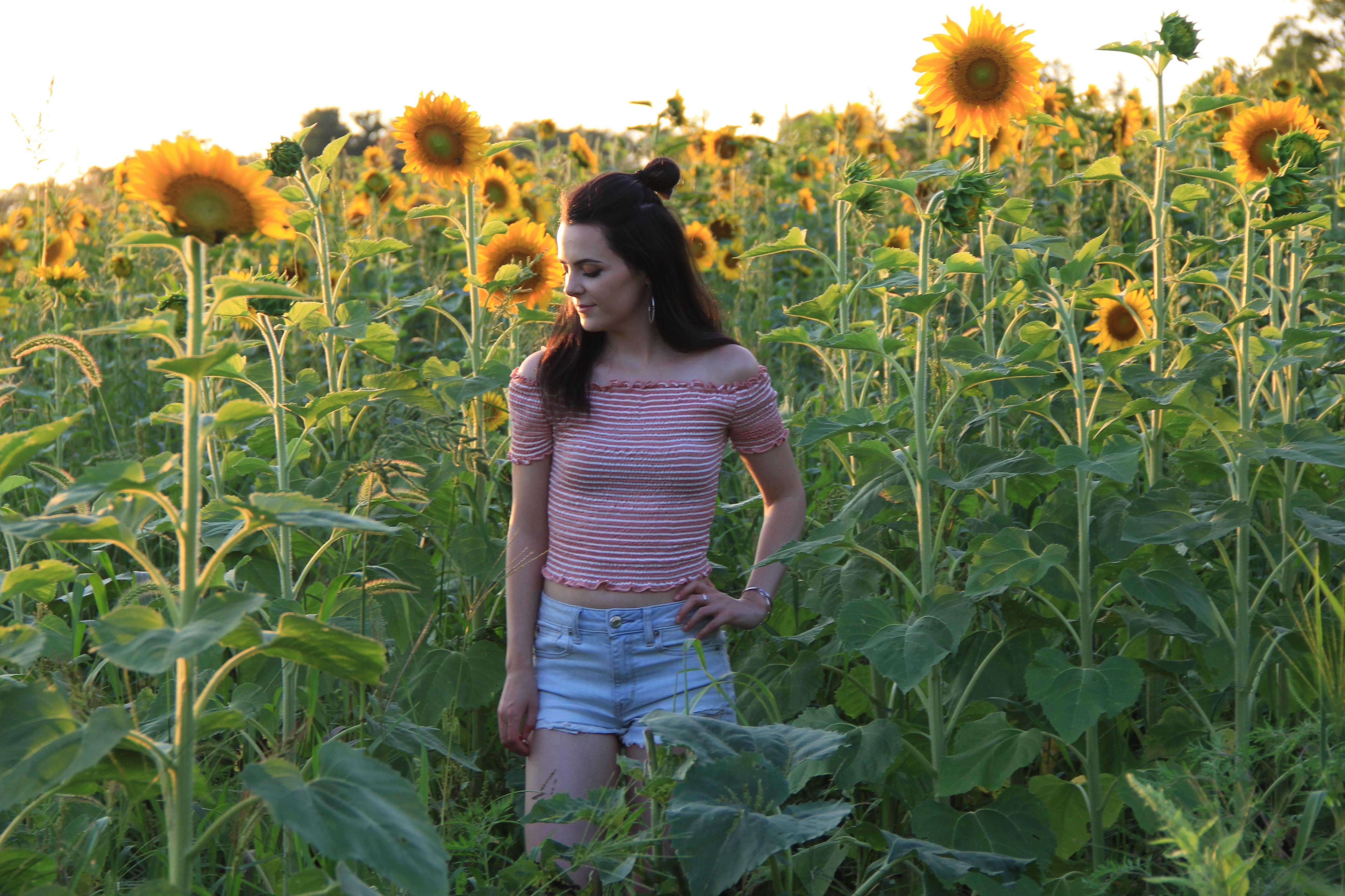 Sunflower Field : OOTD